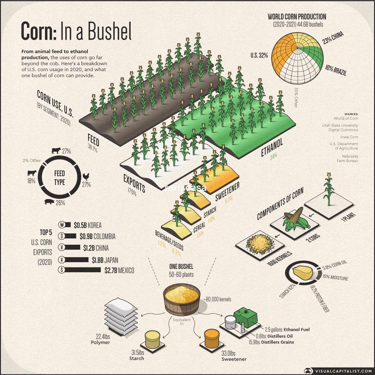 The Uses of Corn: Industries Affected by High Corn Prices